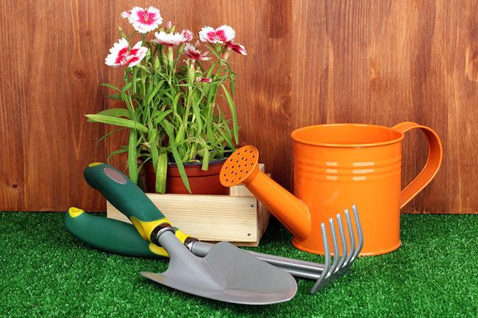 Wapnowanie gleby – do czego się przydaje w ogrodzie?