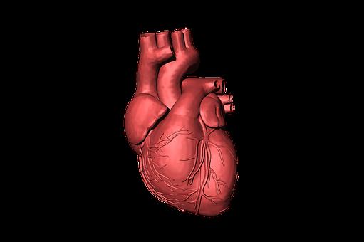 Cewnikowanie serca